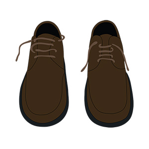 Pair Of Shoes Illustration