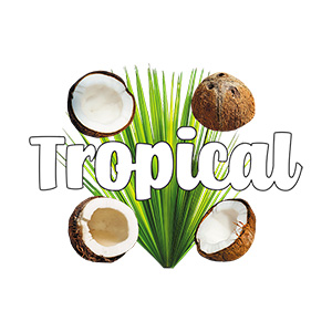 Tropical Coconuts Collage